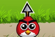 Angry Birds amour Bounce