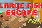Large Fish Escape