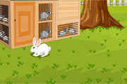 Lapin Escape From Aigle