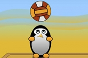 Pingouins de volleyball
